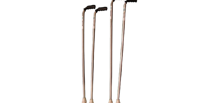 Walking Aids_Walking Cane